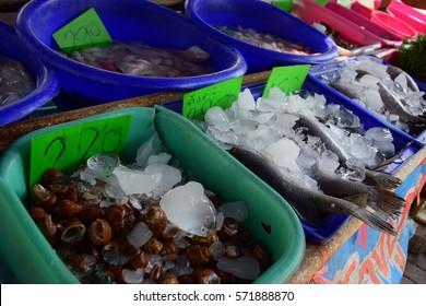 fresh seafood local shop.