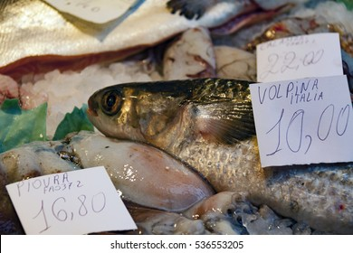 Fresh seafood at the market, Realto. Venice,Italy