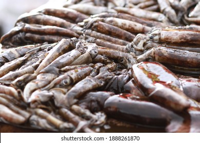 Fresh seafood on traditional fish market in Palu city. Fresh fish selling in the fish market in inpres market - Traditional local Pasar Ikan Sulawesi Tengah.  - Shutterstock ID 1888261870