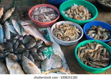 Fresh seafoods at morning in a beach Fort Cochi, India
