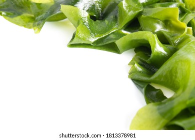 Fresh seaweed wakame isolated on white background with copy space. Japanese food