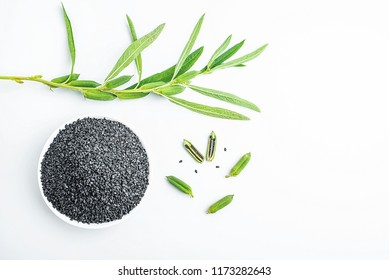 Fresh sesame strain and black sesame on white background