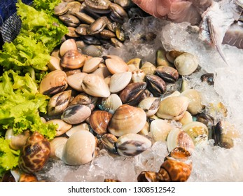 Fresh shellfish on ice from the fish market. Shellfish such as clams are delicious, Seafood on ice at Night Market in Hua Hin, Thailand