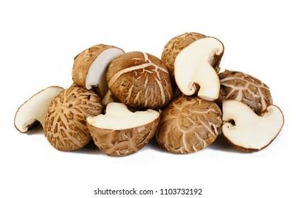 fresh shiitake mushroom on white background