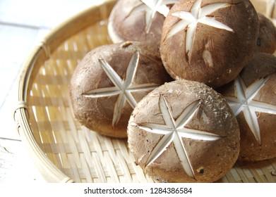 The fresh shiitake mushroom used in Japanese food,  The shiitake mushroom which displayed it and did a cut,  Healthy fresh shiitake mushroom