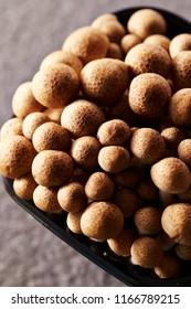 Fresh shimeji mushroom