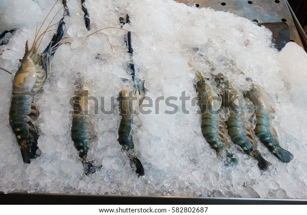 fresh shrimp in ice  at super market
