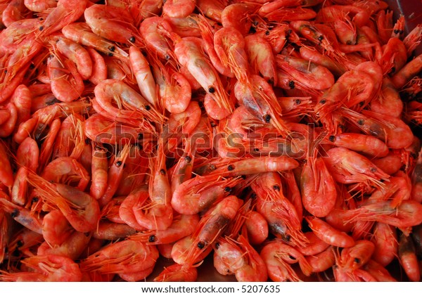 fresh shrimps on the fish market