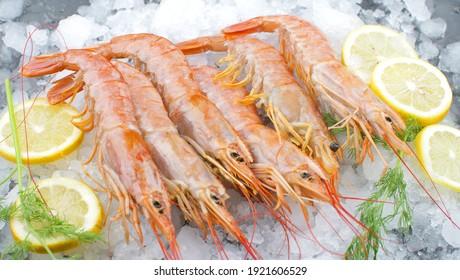 fresh shrimps on ice with salad and lemon slice
