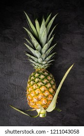 Fresh single ripe pineapple on dark background, vertical composition