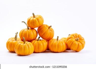 fresh small  pumpkins