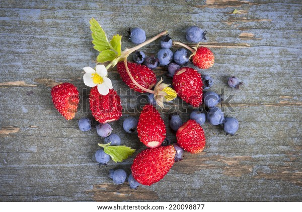 Fresh small wild strawberries and blueberries on old blue wooden background