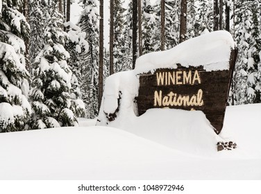Fresh snow covering the boundary marker sign entering Winema National Forest Oregon