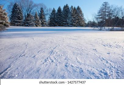 Fresh Snow In Northwest Ohio