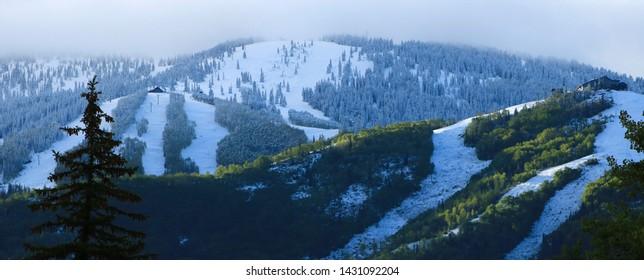 Fresh Snow on the Steamboat Springs Ski Resort, Steamboat Springs, CO/USA (June 22, 2019)