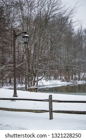 Fresh snow on the street lamp and trees surrounding Holiday Lake in Manalapan New Jersey.