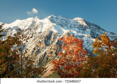 Fresh snow in the Wasatch Front with fall color, Utah, USA.