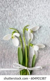 Fresh snowdrops bouquet on shiny silver background