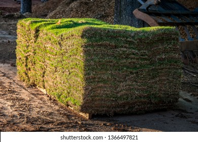 Fresh sod grass squares stacked on pallet ready for landscape installation.