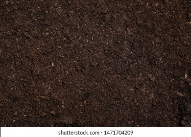 Fresh soil for gardening as background, top view