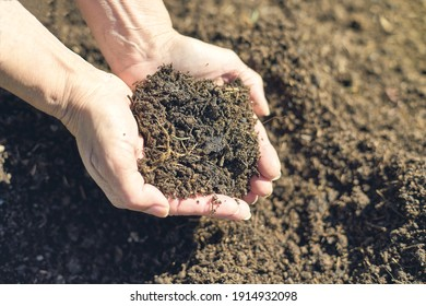 Fresh soil in two hands with sunlight. Recycling trash to compost.