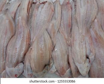fresh sole solea soleidae flatfish on ice, market, close up