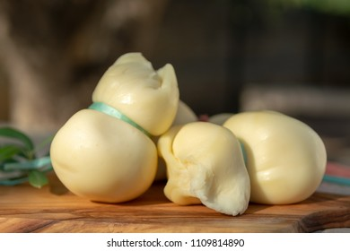 Fresh South Italian traditional cow or cow and sheep semi-soft cheese Scamorza ready to eat