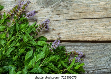 Fresh spearmint on the vintage wooden table