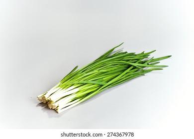 Fresh spice. Green Onion on grey background