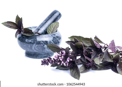 Fresh spices and herbsisolated on white background cutout. red basil leaves.