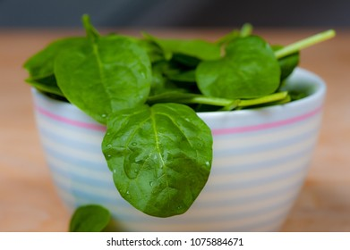 fresh spinach displayed in a bowl with blurred background