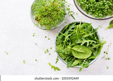 Fresh spinach leaves with arugula and sprouts garden cress and mustard. Healthy diet and clean eating concept. Copy space, Top view.