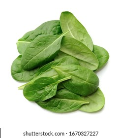 Fresh spinach leaves isolated on white backgrounds.