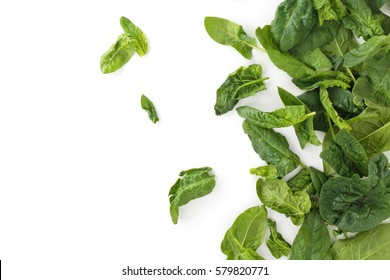 Fresh spinach leaves. Isolated on white background.