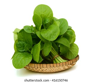 Fresh spinach leaves on white background