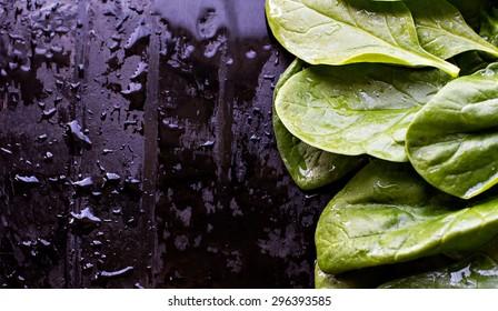Fresh spinach on a black background. Dark photo.