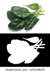 Fresh spinach (Spinacia oleracea) leaves, top view. Clipping paths, shadow separated, natural daylight color