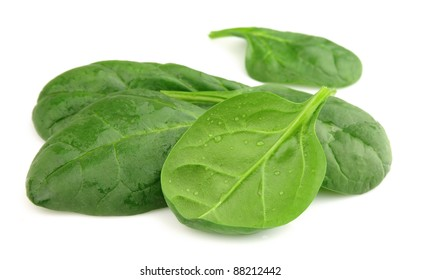 Fresh spinach with water drops on a white background