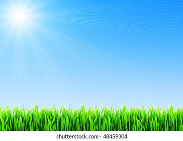 Fresh spring grass under blue sky