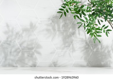 Fresh spring green leaves on branch in sunlight with shadow on white marble tile wall, wood table, copy space. - Shutterstock ID 1928963960