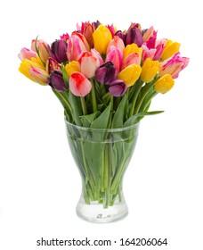 fresh spring tulips  in vase  isolated on white background