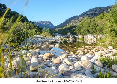 Fresh spring water rock pool with pebbles with vegetation along the side with reflection and blue sky.