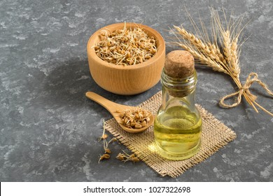 Fresh sprouted wheat seeds in bowl and spoon, ears, wheat germ oil in bottle. Source of vitamins and micronutrients, has general strengthening, immunostimulating, antibacterial, antioxidant properties