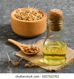 Fresh sprouted wheat seeds in bowl and spoon, wheat germ oil in bottle. Source of vitamins and micronutrients, has fortifying, immunostimulating, antibacterial, antioxidant properties. Square image
