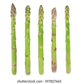 Fresh sprouts of asparagus isolated on white background.
