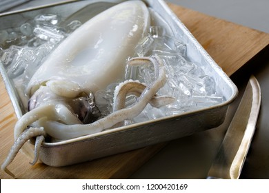 Fresh squid and ice in the tray prepare for grill / Select focus