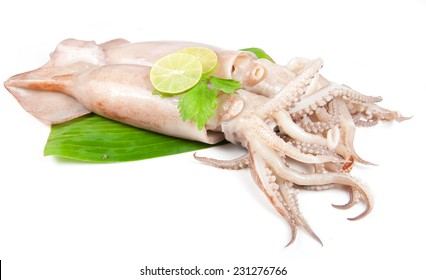 fresh squid with lemon and parsley isolated on white