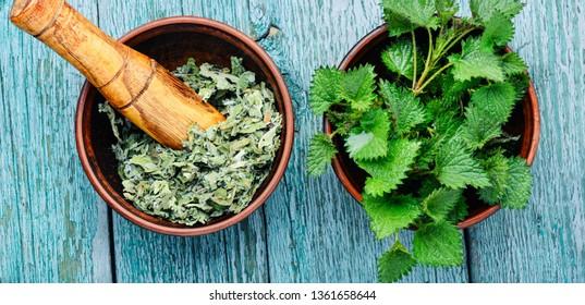 Fresh stinging nettle leaves.Bowls with fresh nettle leaves