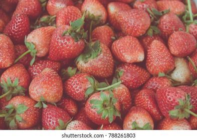 Fresh strawberries bunch background vintage tone.