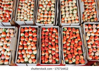 Fresh strawberries in carton box.
